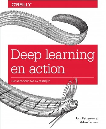 Deep learning en action - Une approche par la pratique - collection O'Reilly